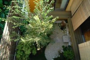 家作りは突然に!?中庭で90歳の母の暮らしをこんなに豊かに!