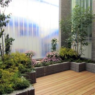 植物が元気に育つ明るい庭。塀になっているFRPの折板は駅の屋根などにも使われている素材で、ジグザグに折れているため、上下の支えだけでピシッと自立する