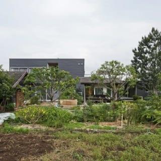 外観/Aさん邸は道路に面した南側と裏手の北側に庭がある。写真は、北に広がる大きな庭と畑からの眺め。中央に土間があり、右の平屋が親世帯、左の2階建てが子世帯。モダンな印象の外壁は、耐久性の高いガルバリウム鋼板