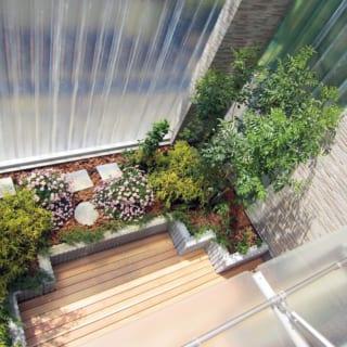 上の階から見下ろした庭