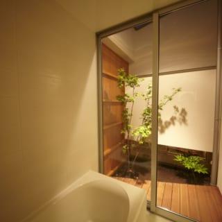 浴室に面した坪庭。木を植えてライトアップしたいというご主人の念願が叶った。坪庭の反対側は玄関で、足元に少しだけ植物が見えるようになっている