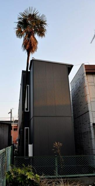 外観/樹齢100年を超えるシュロの木。揺れて家屋に当たることを考慮して屋根にクッションを設けてある。イリズミの窓から、ご家族もランドマークを身近に感じられる