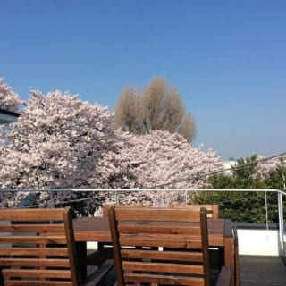 ルーフバルコニーから満開の桜を満喫できる