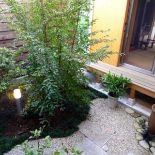 中庭 水琴窟/中庭には、心地よい音色を楽しめる水琴窟を設置。手入れのラクな置き型タイプを…と、石井さんが苦労して探したものだ。「風情があって落ち着く」と来客にも大好評