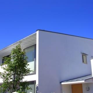 真っ白な外壁が青い空に映える。窓から緑が見えるよう、大きく伸びる木を配した