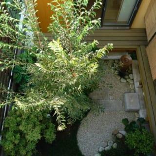 中庭 簾/夏は縁側に簾をかけて過ごす。涼しいのはもちろんだが、見た目の情緒も大きな魅力