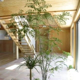 1階LDK~土間/LDK、土間、庭の3空間はフラットにつながり、ひとつの大空間のよう。LDKにいても屋外とひと続きの心地よさを感じられる。段差がないため遊び盛りのお子さんたちも元気に駆け回れる