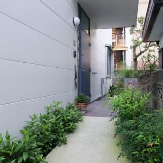玄関アプローチ/道路から細い道を入って右に折れると、緑に彩られた玄関へのアプローチがお出迎え。ここを直進するとそのまま南の庭に行くことができる。玄関の扉は、深みのあるブルーグレー。Mさんにとってなじみ深いパリの雰囲気を感じさせる色だ