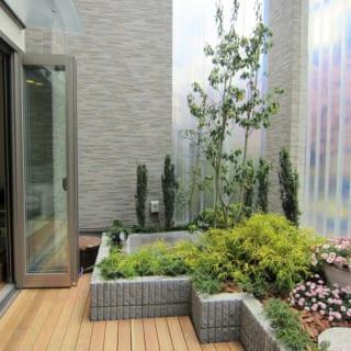 庭とつながったリビングは、小上がりに腰かけて縁側のようにも