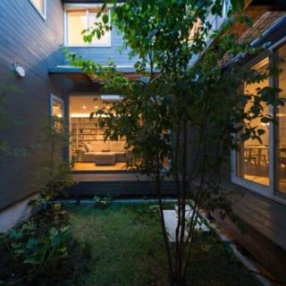 中庭の植栽。室内から見る葉の揺れ方、木漏れ日など一つひとつの情景を考慮してプランニングされている。 シンボルツリーとしてエゴの木を植樹。