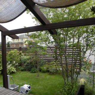 外部の柱や板張りには耐候性・耐久性が高い四国産の焼きスギを採用。腐食や虫食いにも強いので、メンテナンスの手間を軽減できる。
