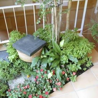 1階土間植栽スペース ホース入れ/土間の植栽スペースには、緑のお手入れに欠かせない水道のホース入れもつくった。蓋をすれば和テイストの置物として空間にしっくり馴染む。庭の設計も得意とする勝田さんならではの遊び心が楽しい