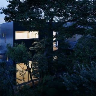 夜の外観/隣の実家の庭から見た夜のS邸。土間の明かりが桜の木のあたりにほどよく漏れ、高級感あふれる佇まい