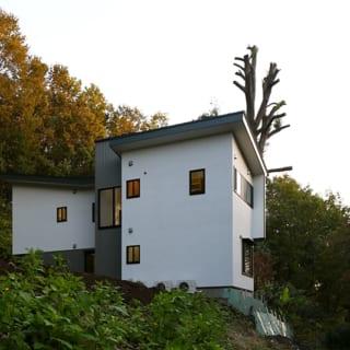 北側から見たS邸。ファサードとはまた違った顔を見せる。片流れ屋根はどうしても水上側の壁が高くなり拒絶感が出てしまうため、カラーリングや形に配慮がなされ、スケールダウンが図られている