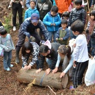 伐採参加時の写真。福田さんが参加するNPOでは、家を建てない人も参加できる森林イベントを随時開催している