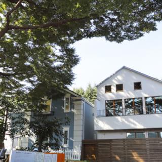 外観/目の前には区の保存樹林である大きなケヤキの木が立っており、リビングの窓からはまるで絵画のようなケヤキの景色を望むことができる