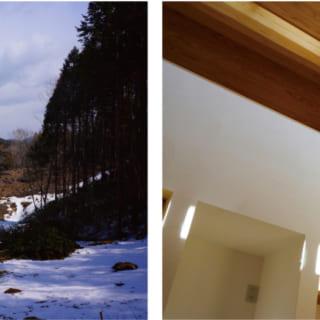 写真左:伐採を体験した山林の景色。右:上部棟木は太鼓落シ。2本の通し柱によって支えられる
