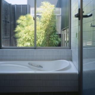 庭の植栽を望むバスルーム。周囲を囲まれているので窓を開けても外からの視界は気にならない