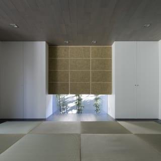 和室の下側の窓から顔を覗かせる植栽(クロチク)。正面に見える部分は一見すると壁のように映るが、実はすべて収納スペースである