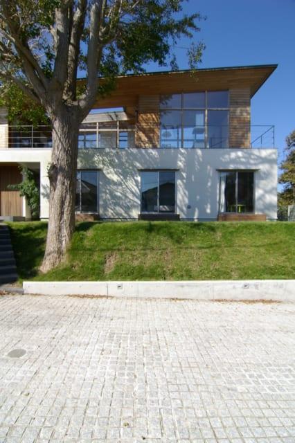 D邸を正面から望む。緩やかに傾斜した屋根が特徴的だ。そしていちょうの木はシンボルツリーの役割を果たしている