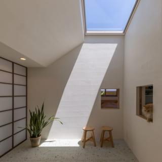 1階のほぼ中心に設えたインナーテラス。ここに畳を敷いて、お茶会を催したこともあるそうだ。通気を考慮しトップライトは開閉式