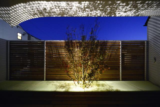 夜になると、もみじは下からライトアップ。光が透過しバルコニーが幻想的な雰囲気に