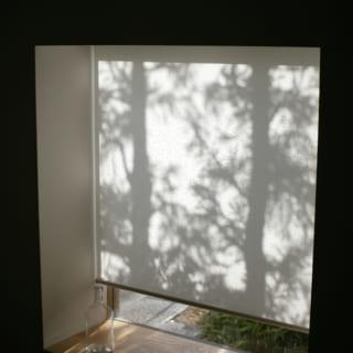 応接ルームの出窓のロールスクリーンを降ろすと、木々の美しいシルエットが影絵のように映し出される