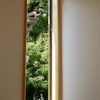 外の目線が開ける方向に効果的にもうけられた窓。隣家のすき間の緑を楽しむことができる