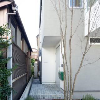 玄関へのアプローチは小さな石を張り、石畳風に仕上げた。シンボルツリーはかわいい花が咲くヤマボウシ