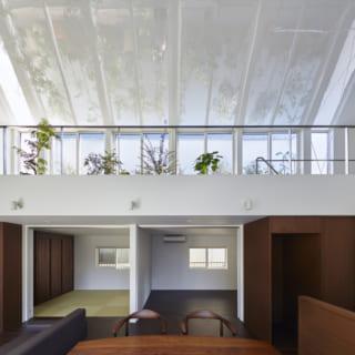 LDKからの眺め。手前がLDK、奥は和室、寝室、水まわり。写真上部は植物を置いてある2階。邸内はワンルームのような造りなので1階でも緑が見え、空間ごとの室温差も生じにくい。鏡面の勾配天井には緑と青空が映り、天井全体がフロストガラスのトップライトのようにも見える