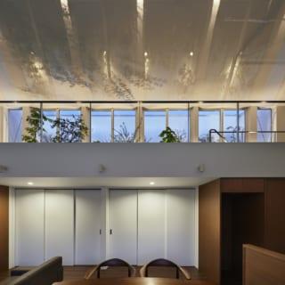 1階の照明の一部と、2階のフロアライト、2階テラスの照明をつけた状態。天井には植物そのものだけでなく、照明による木の葉のシルエットが影絵のように映り、幻想的な美しさ