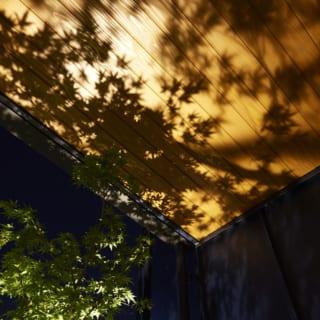 玄関ポーチにはお子さまにちなんだ樹木を植えている。根元には照明があり、夜は板張りの軒天に木の葉の美しいシルエットが浮かぶ。「生きている木の影を、木に映す」という遊び心が楽しい