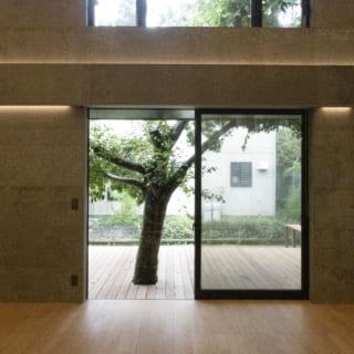 壁はリサイクル材を使った、室内サイディングで落ち着いた雰囲気に。ウッドデッキの木はもともとこの地にあったものをシンボルツリーとして残した