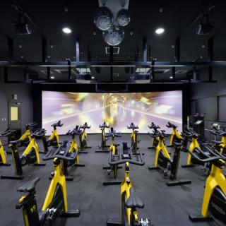 【3階/大人ゾーン】第2スタジオ。ここではボクシング、トランポリン、エアリアルヨガ、バイクなどのエキサイティングプログラムを実施