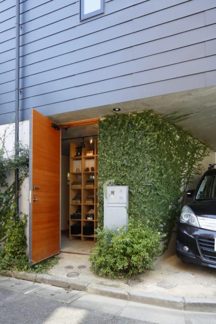 エントランスには、この4年で植物が壁を這うように成長した