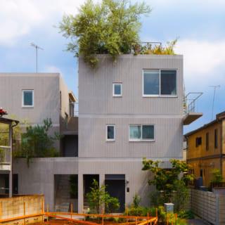 旗竿地に立つ集合住宅だが、住戸の間につくったすき間を庭とする設計により「全住戸庭付き」を実現。住戸をずらして配しているため上階の住戸は4面採光、下階でも3面から光を採れている。どの住戸も複数の方角から光が入って風も通り、自然の力で快適に過ごせる住まいとなった