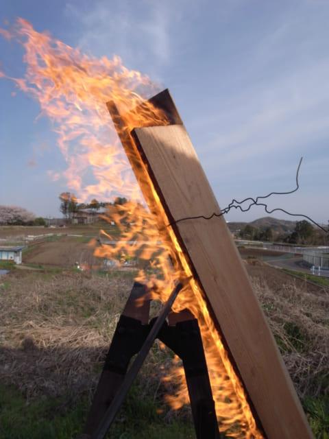 杉を焼く風景。杉を三角形に組み固定して、下から火をつける