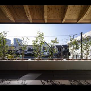 庇、バルコニー、壁が額縁のように風景を切り取る。空の青と食彩の緑のコントラストが美しい