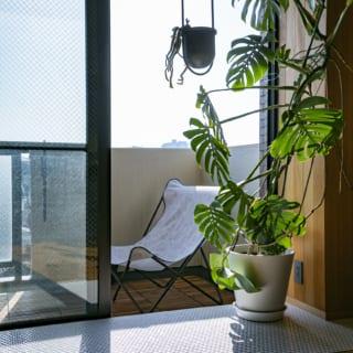 東面のバルコニー側には、光沢感ある白いタイルを敷き、インナーテラスに。水やりしやすい環境で、観葉植物もすくすく育つ