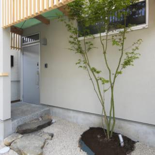 玄関まわりは砂利を敷き、シンボルツリーは古くから日本人に愛されてきたモミジを植えている。昔ながらの住宅街にしっくり馴染む、洒落た和テイストの「家の顔」だ