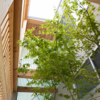 玄関ポーチの上にある2階バルコニーの床は、透明なFRPグレーチング。上方への開放感を損ねない素材だ